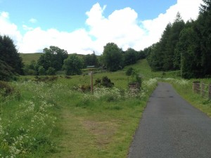 Wooler Common St Cuthberts Way