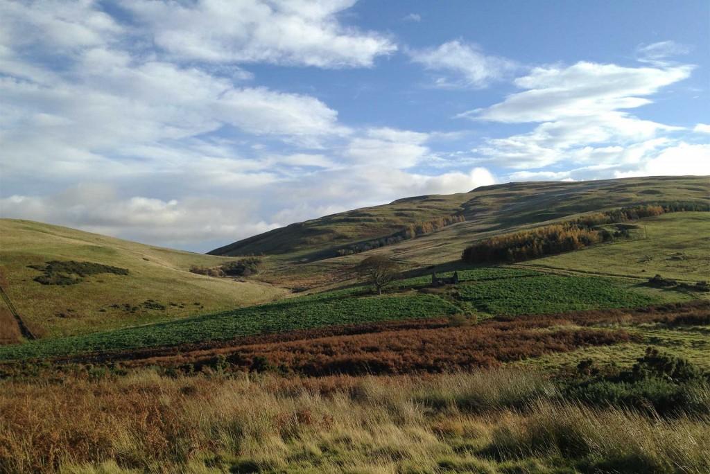 Empty Northumberland Hills