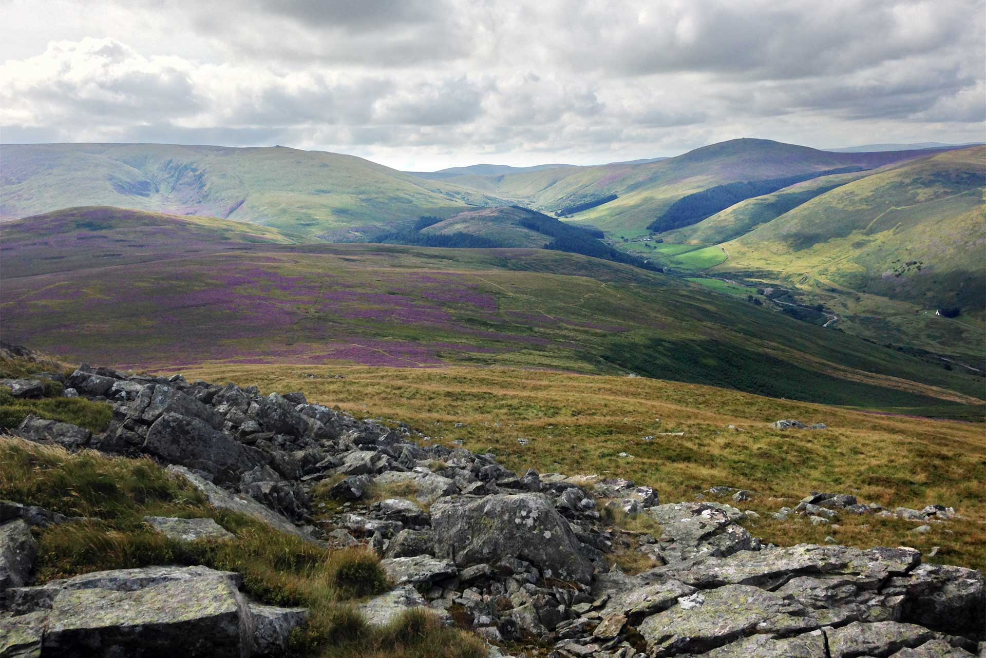College Valley from Hare Law